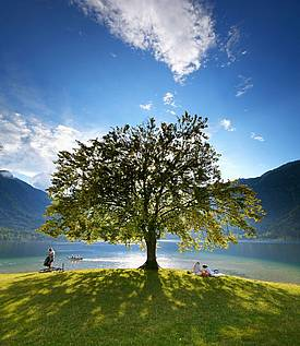 Bohinjsko jezero, photo Tomo Jeseničnik